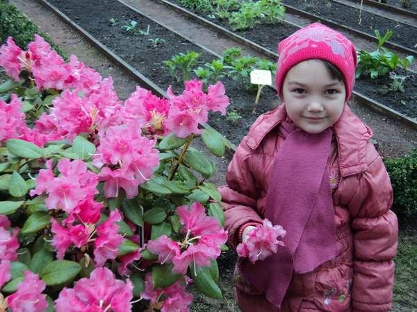 В саду лекарственных трав