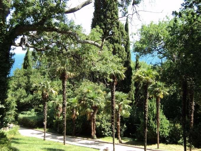алупка воронцовский дворец и парк