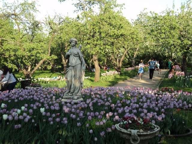 коломенское яблоневый сад