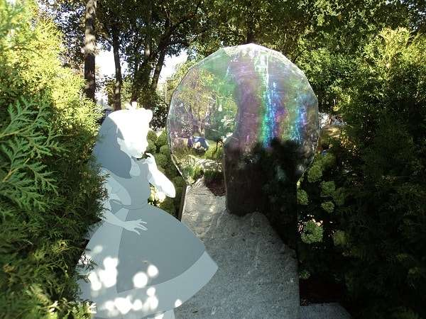 сады и люди 2018 фото