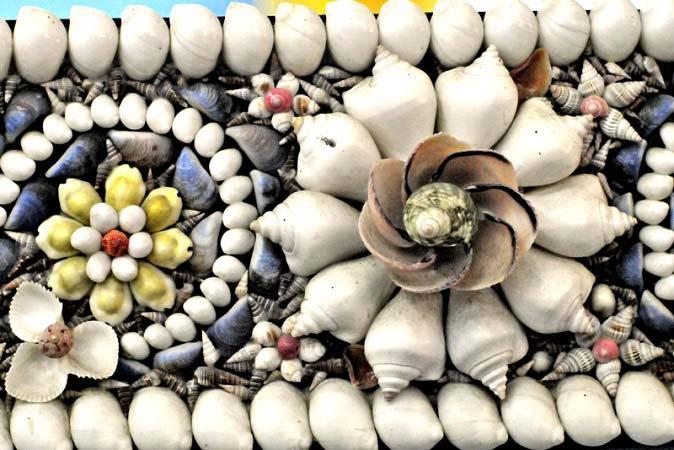 музей морских раковин