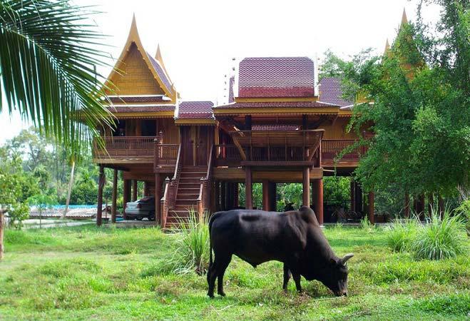 в тайланде пхукет остров фото