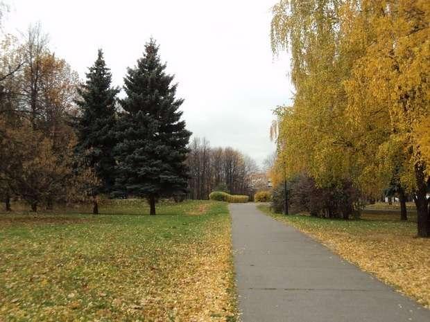 москва коломенское парк фото