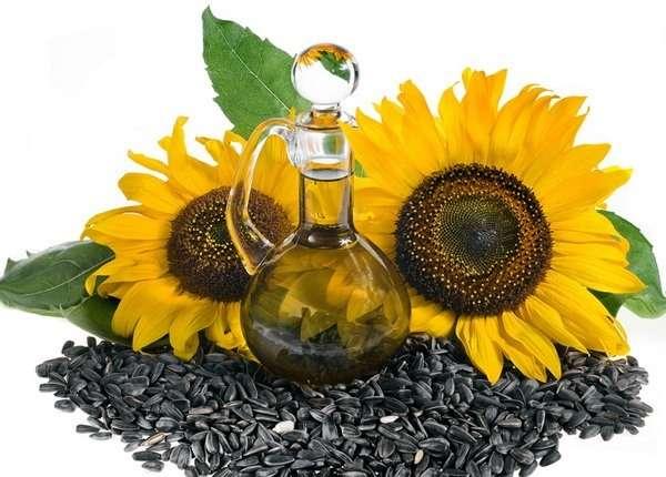 польза и вред подсолнечное масло