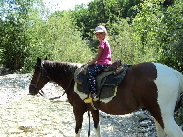 прасковеевка конные прогулки