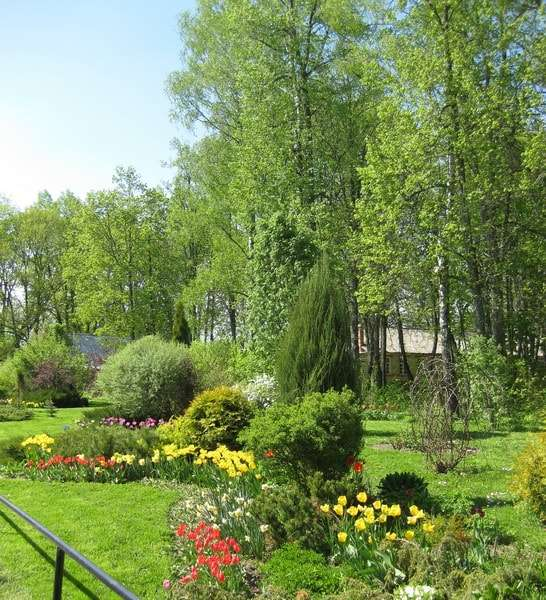 монастырь в шамордино калужской области