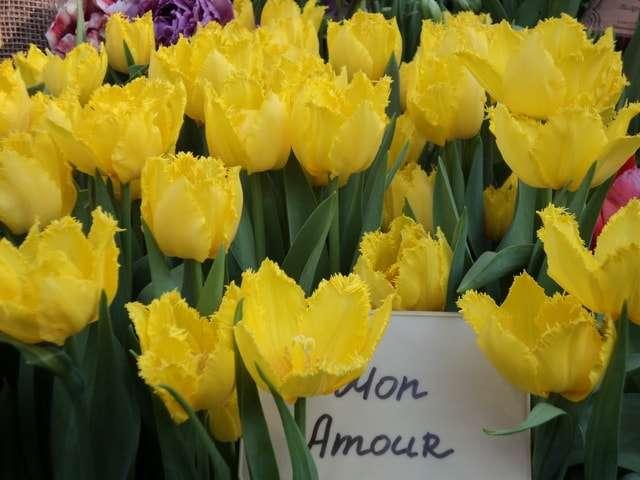 лимонно-желтые mon amour