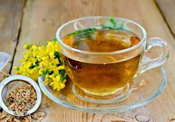 чай зверобой полезные свойства и противопоказания