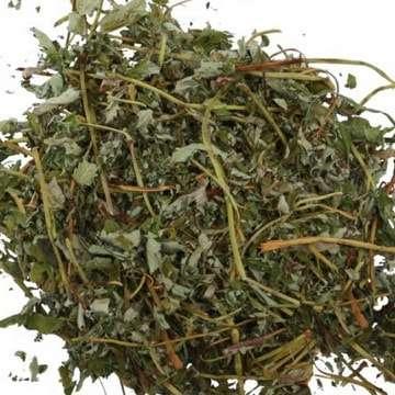 трава лапчатка гусиная применение
