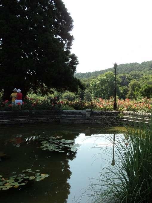 искусственный водоем парка