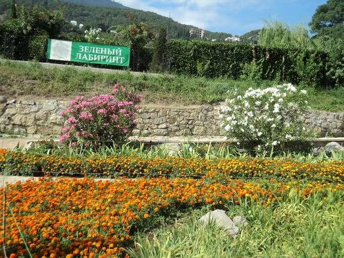 адрес никитский ботанический сад