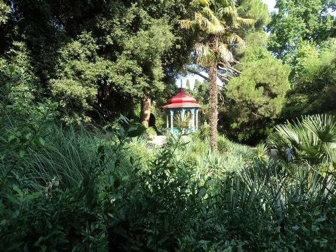 фото никитский ботанический сад в крыму