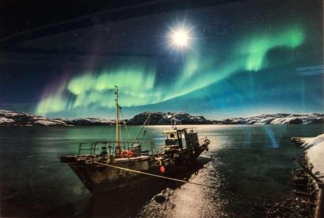 выставка русская арктика в зарядье