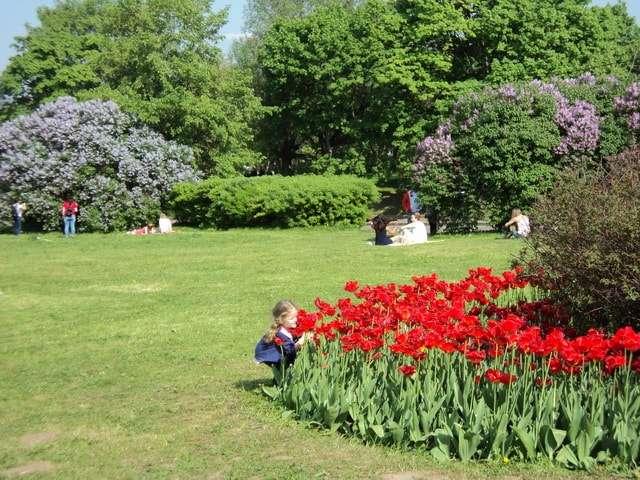 коломенский парк фото
