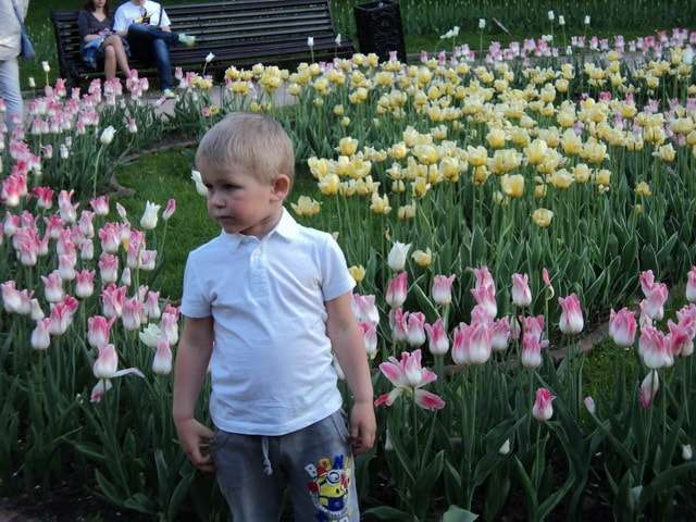 фото среди цветов