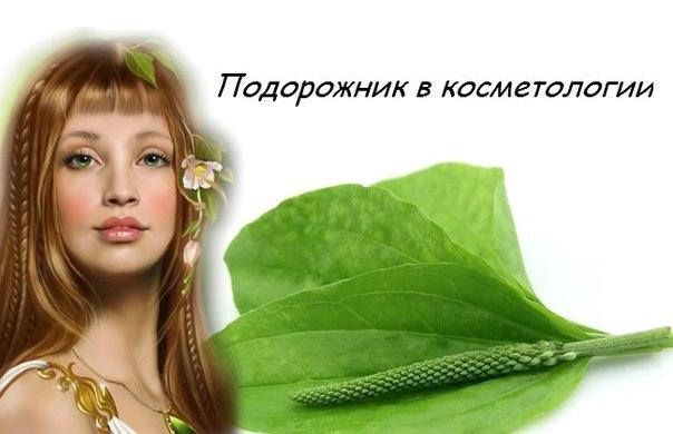 применение в косметологии