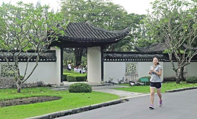 спортсмены на дорожках парка