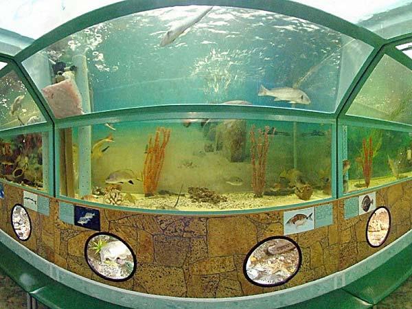 аквариум батискаф